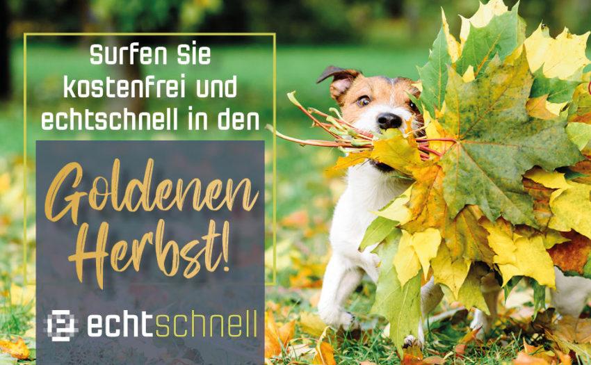 echtschnell in den Goldenen Herbst!
